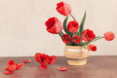 Red tulips bouquet onoden t woable Royalty Free Stock Photography