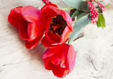 Red tulips bouquet on wooden background. Stock Image