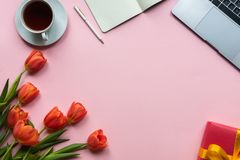 Red tulips with cup of tea, laptop, gift box and notebook on pink background. Copy space. stock photography