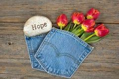 Red tulips in denim pocket Stock Photo