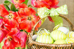 Red tulips with easter eggs Royalty Free Stock Photos