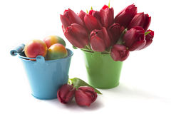 Red tulips and Easter eggs Stock Image