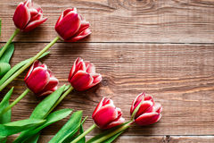 Red tulips. Flowers on wooden background. Copy spase. Royalty Free Stock Image