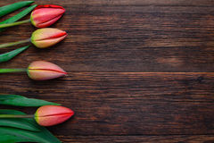 Red tulips flowers on wooden table. Top view, copy space. Stock Images