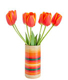 Red tulips flowers with yellow stripes, colored flowerpot, vase, Stock Photography