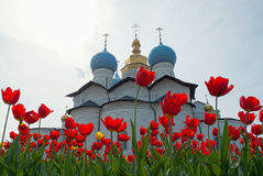 Red tulips in front of  cathedral. Fragment of the Kazan Kremlin.  Annunciation Cathedral. in the foreground  red tulips Stock Image