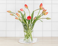 Red tulips in front of tiles Stock Photo