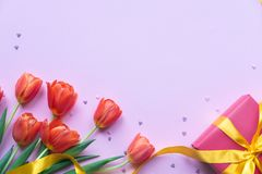 Red tulips and gift box with confetti on pink background. Copy space. stock image