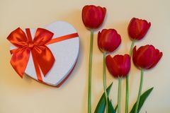 Red tulips and gift box in heart shape with red bow on light pastel background. Beautiful spring floral layout. Greeting card for. Valentine`s, women`s or royalty free stock photo