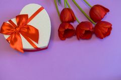 Red tulips and gift box in heart shape with red bow on bright violet background. Beautiful spring floral layout. Greeting card for. Valentine`s, women`s or stock photos