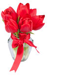 Red tulips in glass jar. Isolated on white with copy  space for your text Stock Photos