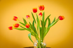 Red tulips in a glass  vase on mosaic table. Stock Photography