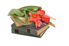 Red tulips, glasses,  and open book Royalty Free Stock Photography