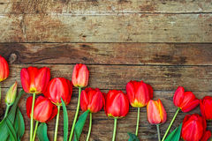 Red tulips with green leaves on the wooden background Royalty Free Stock Photography