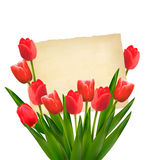 Red tulips with Happy Mother's Day note. Stock Images