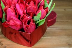 Red tulips in heart box Stock Photo