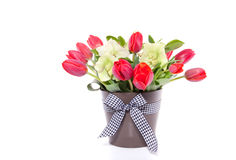 Red tulips and Helleborus Stock Photography