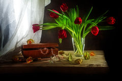 Red tulips, jewelery box, some physalis and white curtain, still. Bouquet of red tulips, jewelery box with necklace and some physalis, still life in painting Stock Image