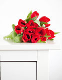 Red tulips lying on white table Stock Photos