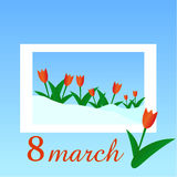 Red Tulips. 8 March. Women s Day. Melting snow in the frame Royalty Free Stock Photography