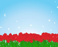 Red tulips meadow. Summer meadow background with tulips. EPS 10 vector illustration Stock Photography