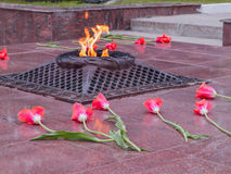 Red tulips near the eternal flame in memory of victims in the great Patriotic war Stock Photos