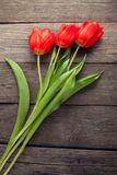 Red tulips on old wooden grunge boards top view Royalty Free Stock Images