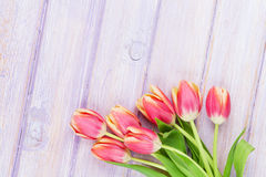 Red tulips over purple wooden table Stock Image