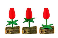 Red tulips on a podium. Tulips with green leaves mean the winner, second and third place Stock Images