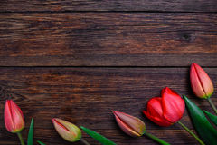 Red tulips spring flowers on wooden background. Top view, copy space. Royalty Free Stock Photo