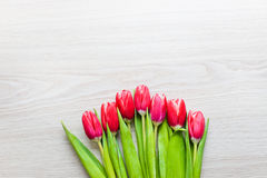 Red tulips are on the table Stock Images
