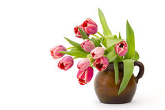 Red tulips in a vase Stock Images