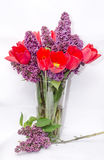Red tulips and violet Syringa vulgaris Stock Photography