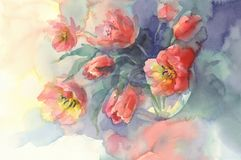 Red tulips watercolor background. Red tulips bouquet on green background hand made watercolor. Still-life with glass vase Stock Image