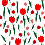 Red tulips on a white background Stock Photography