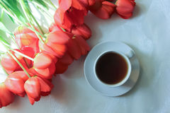 Red tulips. White cup with a cup of tea and red tulips  on white background Stock Photos