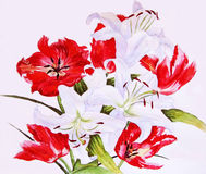 Red Tulips and White Lilies Stock Image