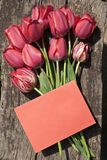 Red tulips on wood. With empty paper (copy space Royalty Free Stock Photos
