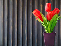 Tulips with wood background Royalty Free Stock Photo