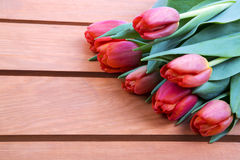 Red tulips on a wooden background Royalty Free Stock Photo