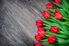 Red tulips on wooden background with space for text Royalty Free Stock Photos