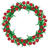 Red tulips wreath. Wreath of  red tulips and green leaves Stock Images
