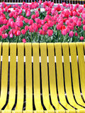 Red tulips and yellow bench. Waiting for lovers stock images