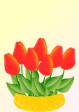 Red tulips in a yellow bowl. A card with red tulips in a yellow bowl on a yellow pink gradient background with a large text field Stock Photos