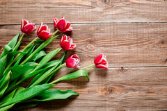 Red tulps. Flowers on wooden background. Copy spase. Stock Photos