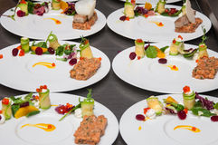 Red tuna and salmon tartar. With mesclun salad & citric foam royalty free stock photos