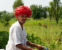 Free Red Turban Man On A Moto In Rajasthan Royalty Free Stock Image - 182537066