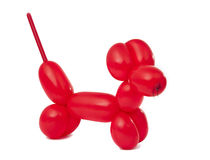 Red twisted balloon dog Stock Photos