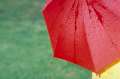 Red Umbrella. Against green grass stock photo