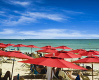 Red Umbrella Beach. A resort in a caribbean paradise carpets the beach with red umbrellas Stock Photos